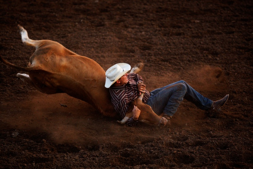082513-spt-rodeo013